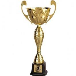 Puchar Tryumf 3086