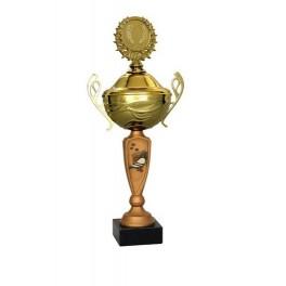 Puchar Tryumf 4100-1