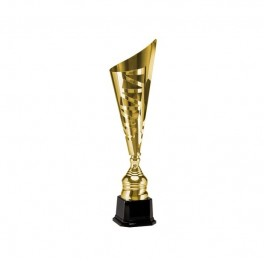 Puchar Tryumf 3089