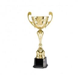Puchar Tryumf 4111